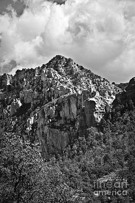 Photograph - Under Sedona Skies In Black And White by Lee Craig