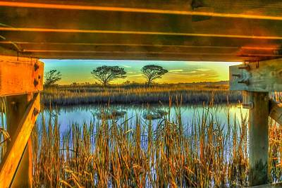 Photograph - Under The Boardwalk by Ed Roberts