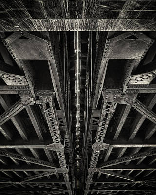 Shark Art - Under the Bridge by Giovanni Arroyo
