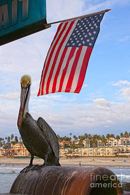 Photograph - Under The Flag - Brown Pelican by Gabriele Pomykaj