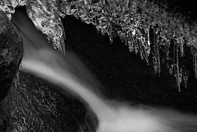 Photograph - Under The Ice by Andreas Levi