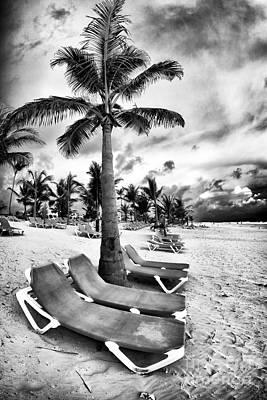 Under The Palm Tree Art Print by John Rizzuto