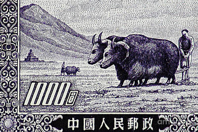 Under The Plough Vintage Postage Stamp Detail Art Print