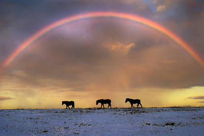 Silver Turquoise Photograph - Under The Rainbow by Adrian Campfield