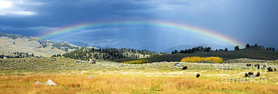 Photograph - Under The Rainbow by Deby Dixon