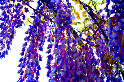 Under The Wisteria Art Print by Alys Caviness-Gober
