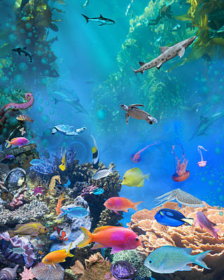 Undersea Photograph - Undersea Hidden Objects by Alixandra Mullins