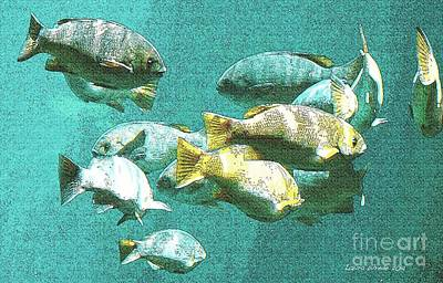 Digital Art - Underwater Fish Swimming By by Artist and Photographer Laura Wrede
