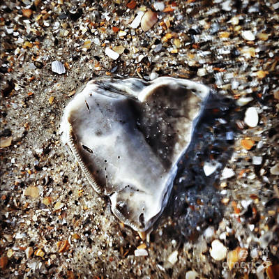 Photograph - Underwater Heart by Kerri Farley