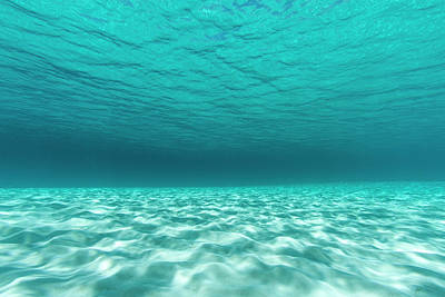 Sandbar Photograph - Underwater Photograph Of A Textured by James White
