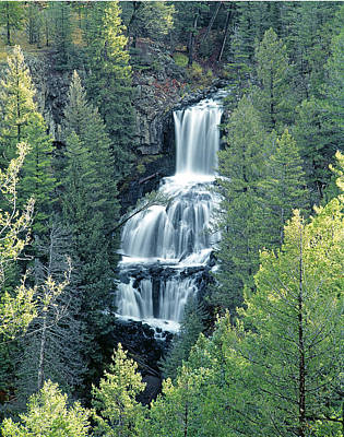 Photograph - 109008-undine Falls In Yellowstone by Ed  Cooper Photography