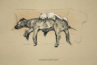 Terriers Drawing - Undulation, 1930, 1st Edition by Cecil Charles Windsor Aldin