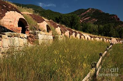 Photograph - Unemployed Coke Ovens by Adam Jewell