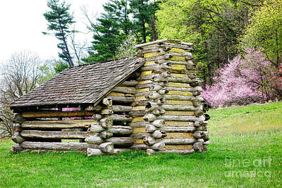 Log Cabin Photograph - Unfinished Shelter by Olivier Le Queinec