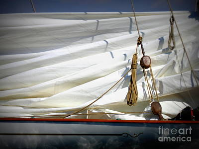 Unfurled Sail Art Print by Lainie Wrightson
