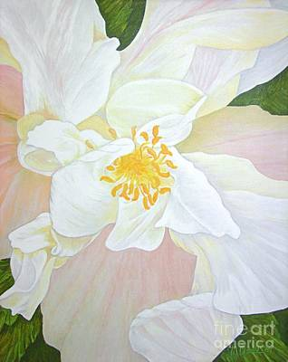 Unfurling White Hibiscus Art Print by Mary Deal