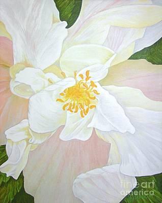 Unfurling White Hibiscus Original