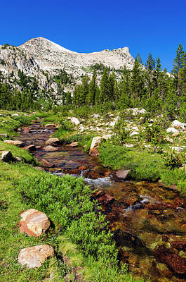 Unicorn Creek Under Unicorn Peak Art Print