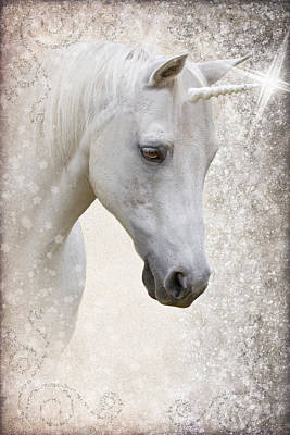 Forelock Photograph - Unicorn D2028 by Wes and Dotty Weber
