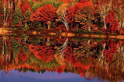 Upper Peninsula Photograph - United States, Michigan, Upper Peninsula by Jaynes Gallery