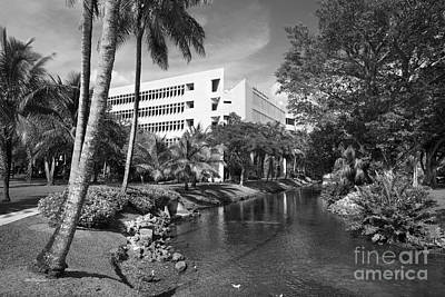 University Of Miami School Of Business Administration  Art Print by University Icons