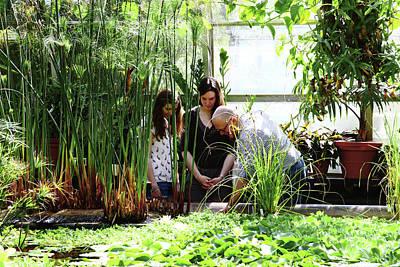 University Of Oxford Photograph - University Of Oxford Botanic Garden by Botanic Garden/oxford University Images