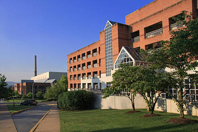 Photograph - University Of Tennessee Campus by Melinda Fawver
