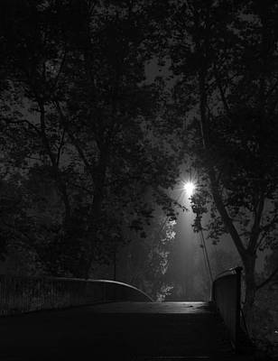 Photograph - Unknown Night In The Park by Miguel Winterpacht