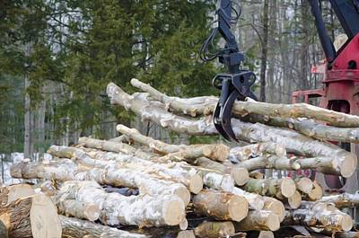 Unloading Firewood 4 Art Print