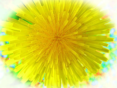 David Bowie Royalty Free Images - Unltra Clean Dandelion Royalty-Free Image by Tina M Wenger