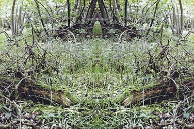 Kaleidoscopic Photograph - Unnatural 33 by Giovanni Cafagna