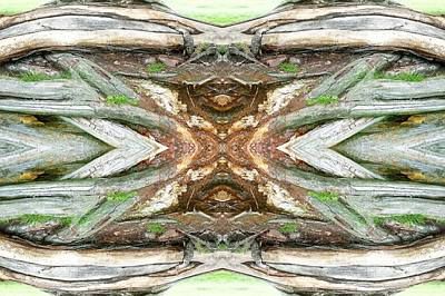 Abstract Digital Photograph - Unnatural 64 by Giovanni Cafagna