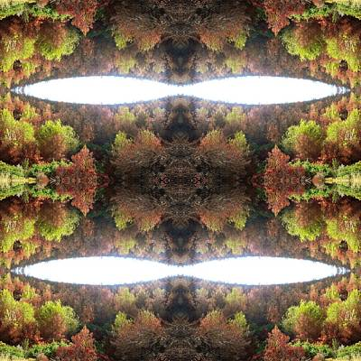 Kaleidoscopic Photograph - Unnatural 77.1 by Giovanni Cafagna
