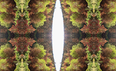 Abstract Digital Photograph - Unnatural 81 by Giovanni Cafagna