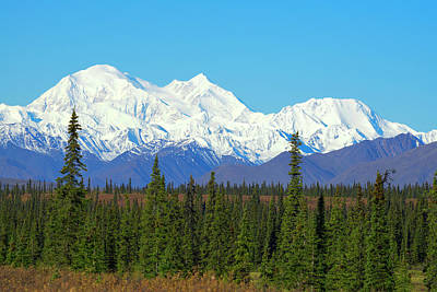 Unofficially Called Denali, Mt Art Print by Rick Daley