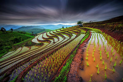 Plantations Photograph - Unseen Rice Field by