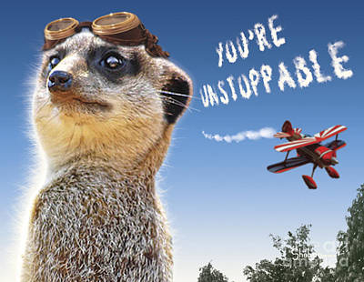 Meerkat Digital Art - Unstoppable by Shaboo Prints