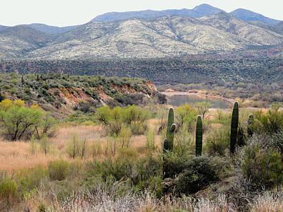 Verde River Photograph - Untamed Arizona by Gordon Beck