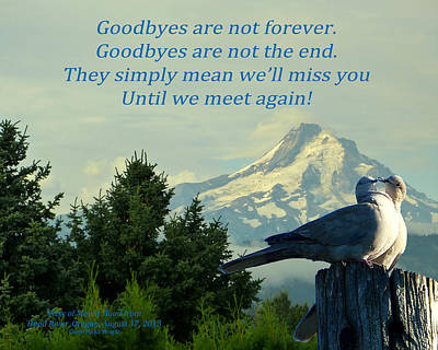 Cindy Wright Photograph - Until We Meet Again by Cindy Wright