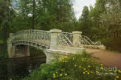Photograph - Gatchina Park by Elena Nosyreva