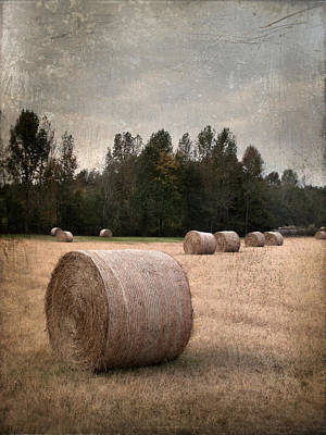 Untitled Hay Bale Art Print by Robert Tolchin