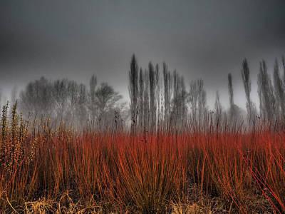 Autumn Field Wall Art - Photograph - Untitled by Ja Ruiz Rivas