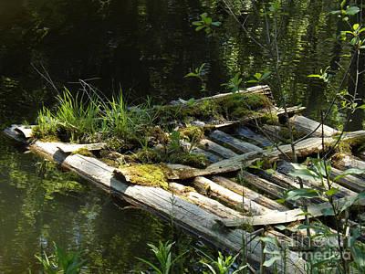 Photograph - Not Forgotten Raft by Brenda Brown