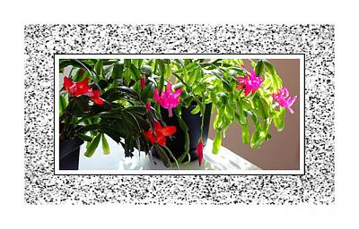 Unusual Simultaneous Bloomers 2 Art Print by Barbara Griffin
