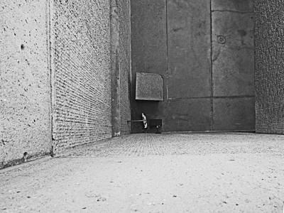 Photograph - Up Down Straight Ahead by David Pantuso