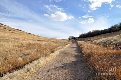 Photograph - Up Hill by Cheryl McClure