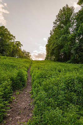 Bucks County Photograph - Up Hill by Kristopher Schoenleber