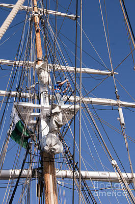 Photograph - Up In The Rigging by Brenda Kean