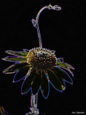Photograph - Up Light by Jen Sparks