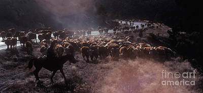 Cattle Drive Painting - Up The Road by Jerry McElroy